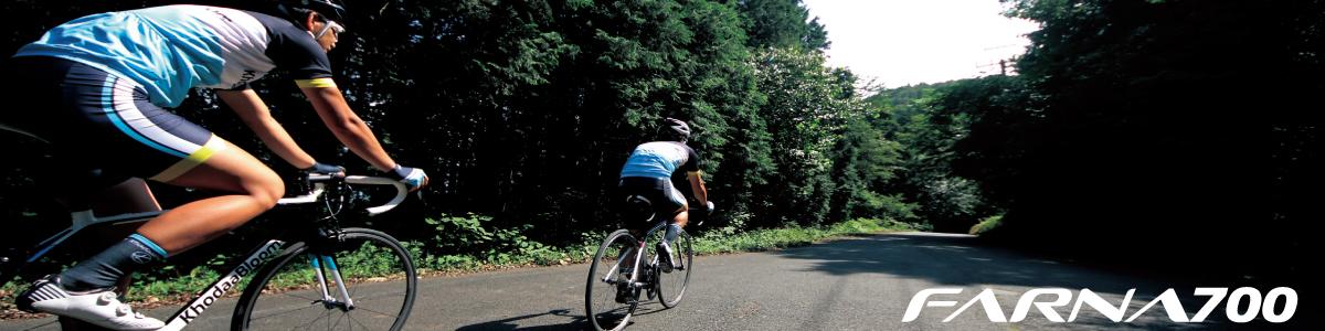 巡航速度25km/h以下で最も快適に走るエンデュランスロードバイク ...