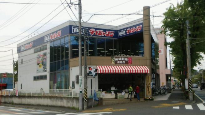 ダイシャリン川崎平01